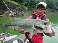 2013年07月02日の釣りの写真