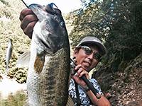 2015年08月18日の釣りの写真