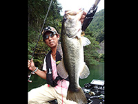 2016年11月08日の釣りの写真