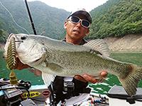 2017年08月01日の釣りの写真