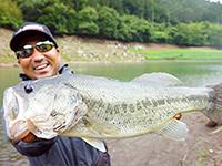 俺たちのバズは愛媛県 金砂湖で釣りました