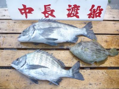 中長渡船の2018年12月30日(日)1枚目の写真