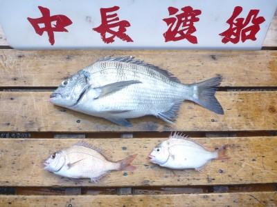 中長渡船の2018年12月30日(日)2枚目の写真