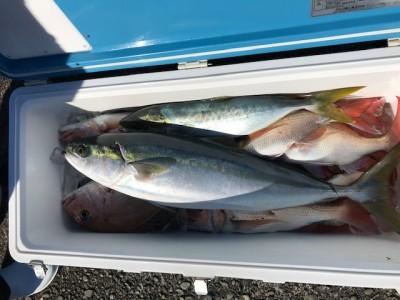釣り船 黒潮丸の2019年1月14日(月)3枚目の写真
