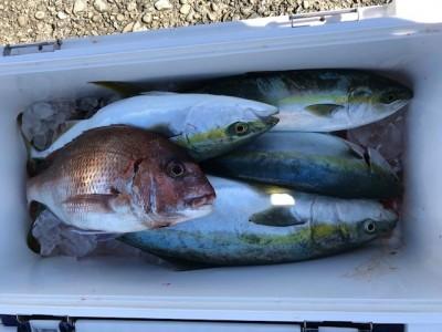 釣り船 黒潮丸の2019年1月14日(月)4枚目の写真