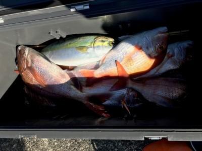 釣り船 黒潮丸の2019年1月14日(月)5枚目の写真