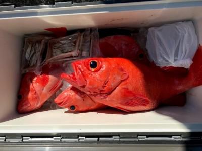 釣り船 黒潮丸の2019年1月19日(土)5枚目の写真