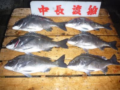 中長渡船の2019年1月19日(土)2枚目の写真