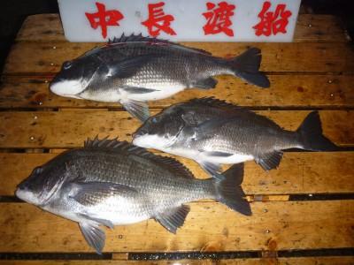 中長渡船の2019年1月19日(土)3枚目の写真