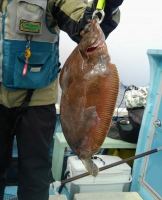 佐々木釣具店 平進丸の2019年1月20日(日)3枚目の写真