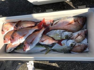 釣り船 黒潮丸の2019年1月23日(水)3枚目の写真