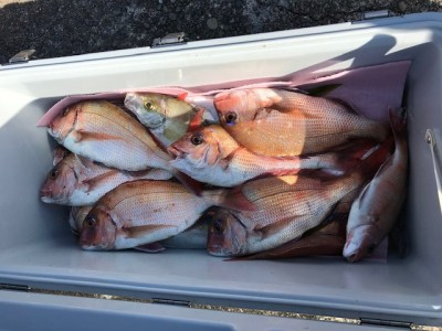 釣り船 黒潮丸の2019年1月23日(水)4枚目の写真