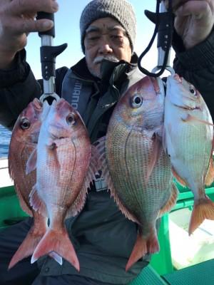 日正丸の2019年1月23日(水)3枚目の写真