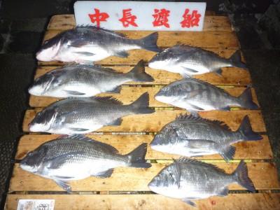中長渡船の2019年1月23日(水)1枚目の写真