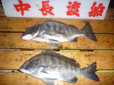 中長渡船の2019年1月23日(水)2枚目の写真