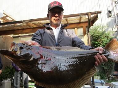 奥村釣船の2019年1月20日(日)3枚目の写真