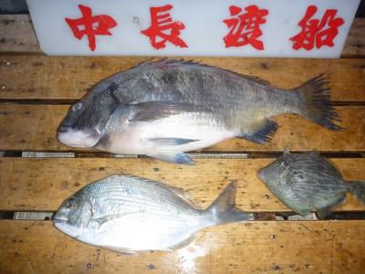 中長渡船の2019年1月24日(木)1枚目の写真