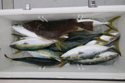 西岡遊漁の2018年12月20日(木)2枚目の写真
