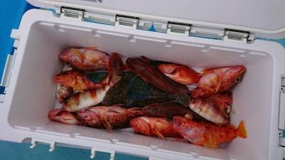 北山丸の2019年1月30日(水)2枚目の写真