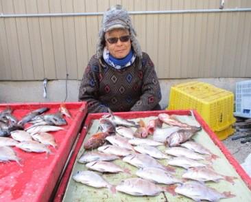 奥村釣船の2019年1月26日(土)4枚目の写真