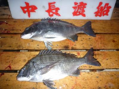 中長渡船の2019年2月7日(木)2枚目の写真