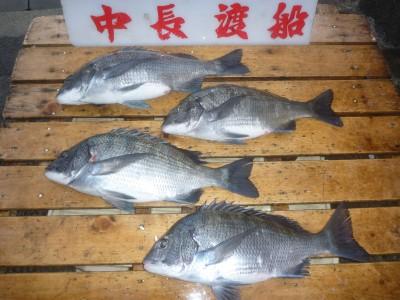 中長渡船の2019年2月15日(金)1枚目の写真