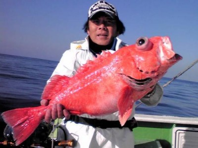 佐円丸の2019年1月17日(木)1枚目の写真