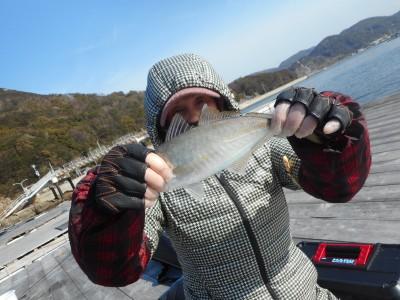 由良海つり公園&釣堀ランドの2019年2月18日(月)1枚目の写真