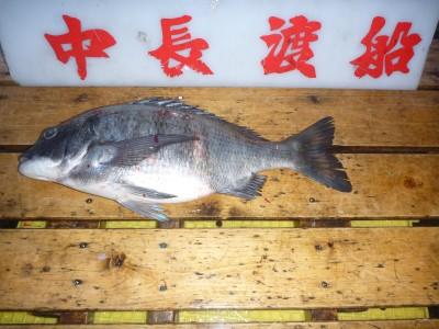 中長渡船の2019年2月18日(月)2枚目の写真