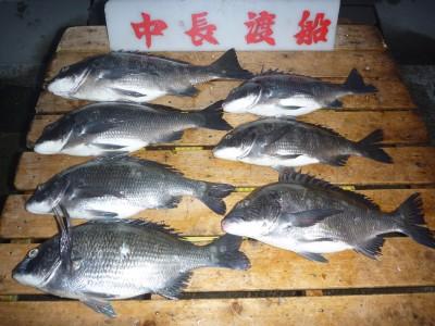 中長渡船の2019年2月22日(金)1枚目の写真