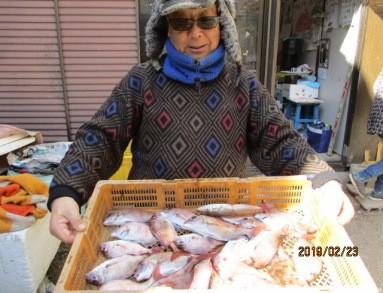 奥村釣船の2019年2月23日(土)1枚目の写真