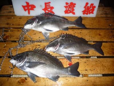 中長渡船の2019年2月24日(日)2枚目の写真