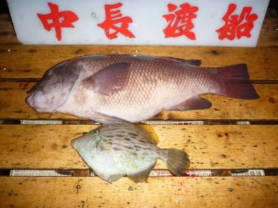 中長渡船の2019年2月24日(日)3枚目の写真