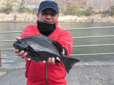磯釣佐市丸の2019年2月26日(火)1枚目の写真