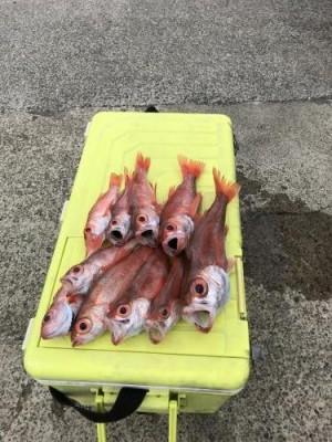 福田丸の2019年2月27日(水)2枚目の写真