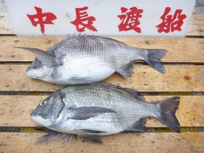 中長渡船の2019年2月27日(水)1枚目の写真