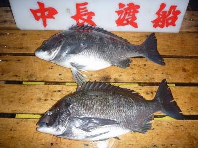 中長渡船の2019年2月27日(水)2枚目の写真