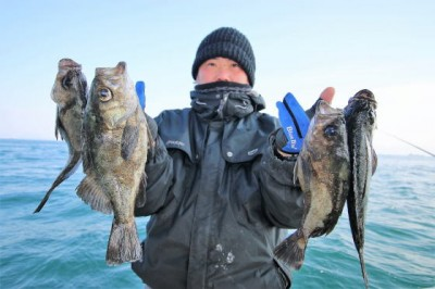 西岡遊漁の2019年2月21日(木)4枚目の写真