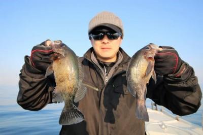 西岡遊漁の2019年2月24日(日)3枚目の写真