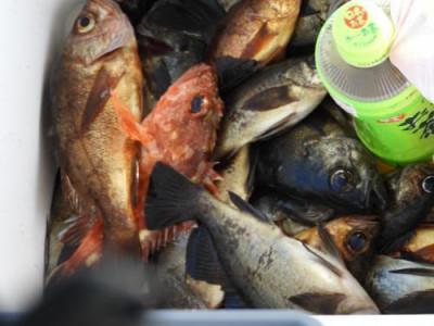 釣具の海友の2019年3月9日(土)5枚目の写真