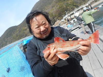 由良海つり公園&釣堀ランドの2019年3月20日(水)2枚目の写真