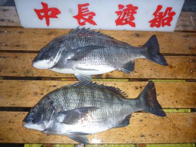 中長渡船の2019年3月20日(水)1枚目の写真