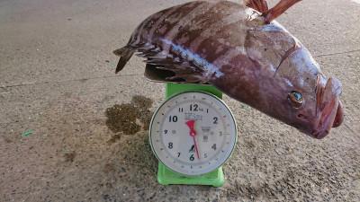 北山丸の2019年3月20日(水)5枚目の写真