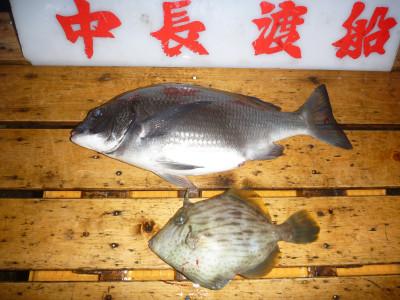 中長渡船の2019年3月24日(日)3枚目の写真