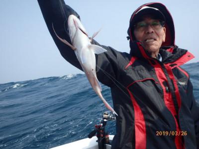 秀吉丸の2019年3月26日(火)1枚目の写真