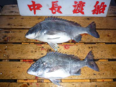 中長渡船の2019年3月27日(水)2枚目の写真