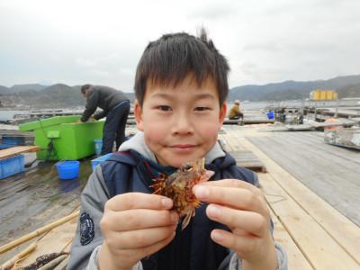 由良海つり公園&釣堀ランドの2019年3月30日(土)1枚目の写真