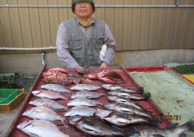 奥村釣船の2019年3月31日(日)2枚目の写真