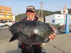 丸銀釣りセンターの2019年3月27日(水)2枚目の写真