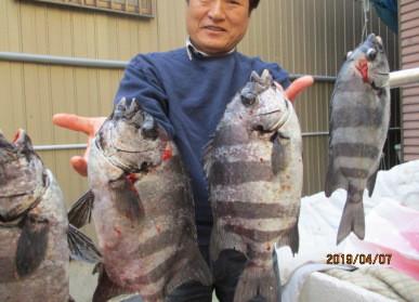 奥村釣船の2019年4月7日(日)2枚目の写真